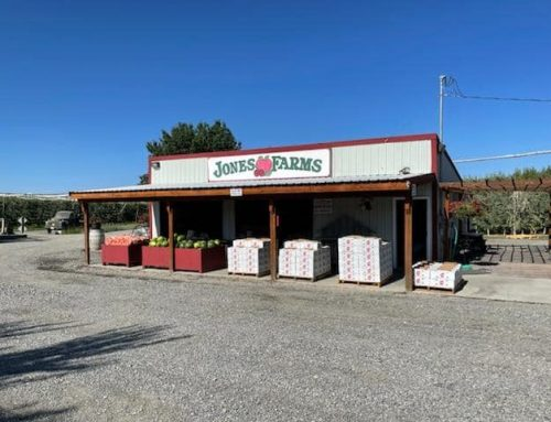Jones Farm Stand open for the season!